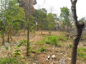 Plot / Land For Sale in  Thrissur