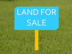 Plot / Land For Sale in  Kichha