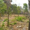 Residential-Plot-Land-For-Sale-in-THRISSUR-Kerala